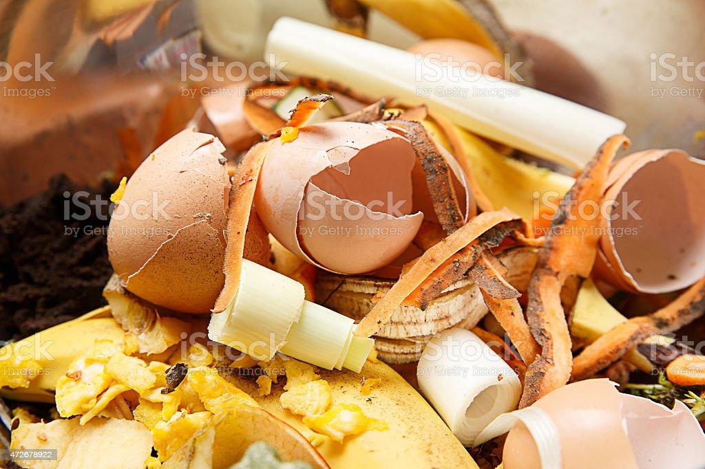 Biological waste, rotten food, leftovers stock photo