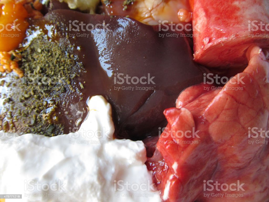 Biologically Appropriate Raw Food for dogs stock photo