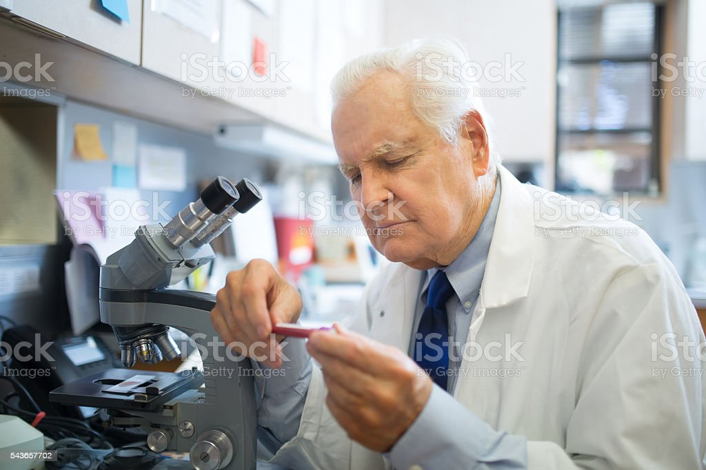 Biologist at the Lab stock photo