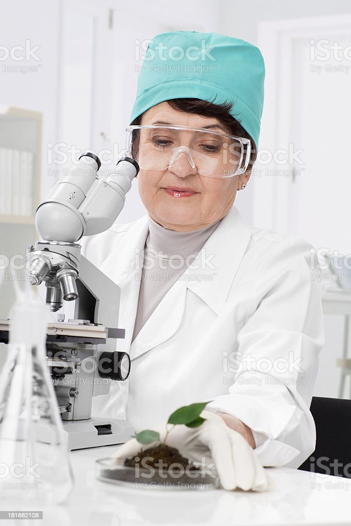 Biologist at work royalty-free stock photo