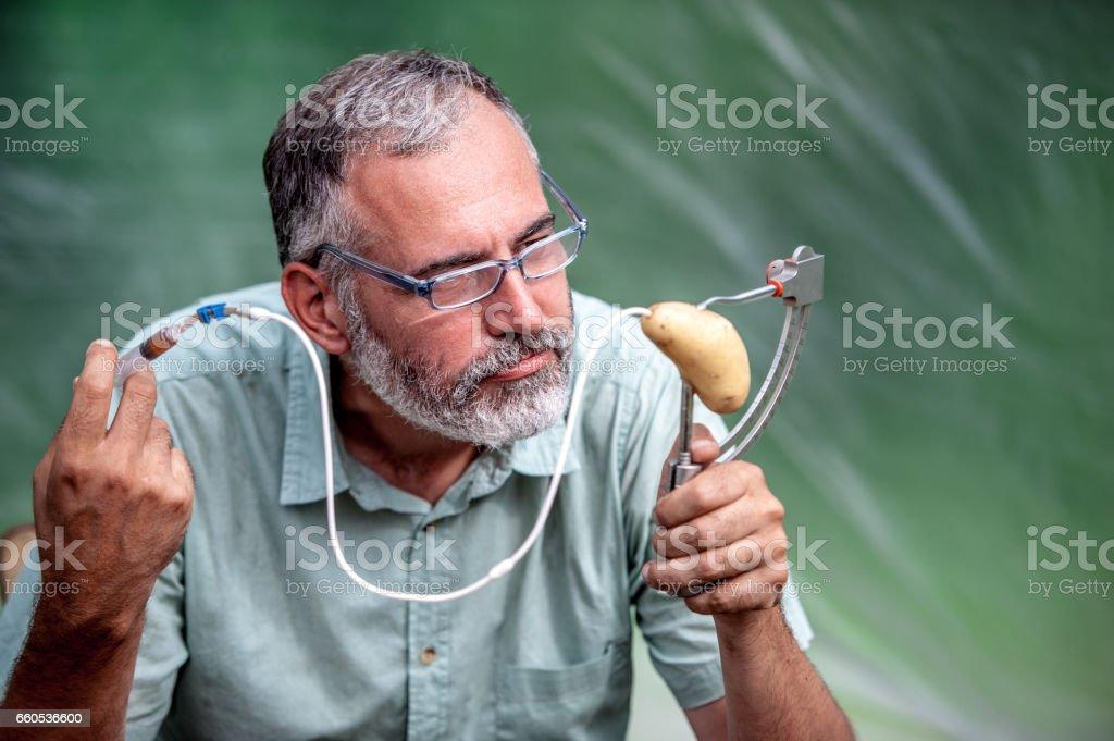 Biologist Examining The Growth Of Harvesting Potato stock photo