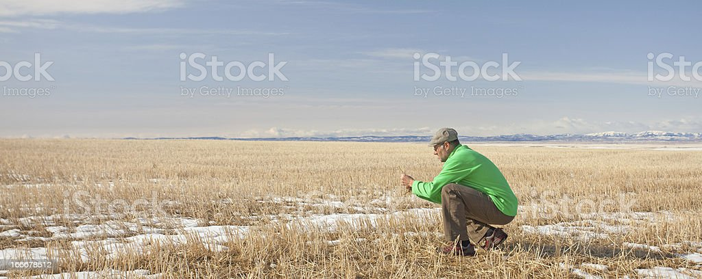 Biologist in a Field royalty-free stock photo