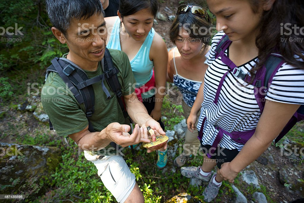 Biologist Teaching Mushroom Identification to Group of Hikers in Woods stock photo