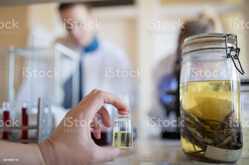 Biologist with sample container stock photo