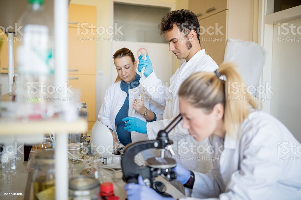 Biologists looking through microscope stock photo