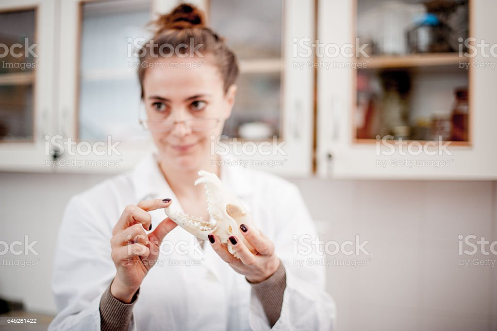 Biology class stock photo