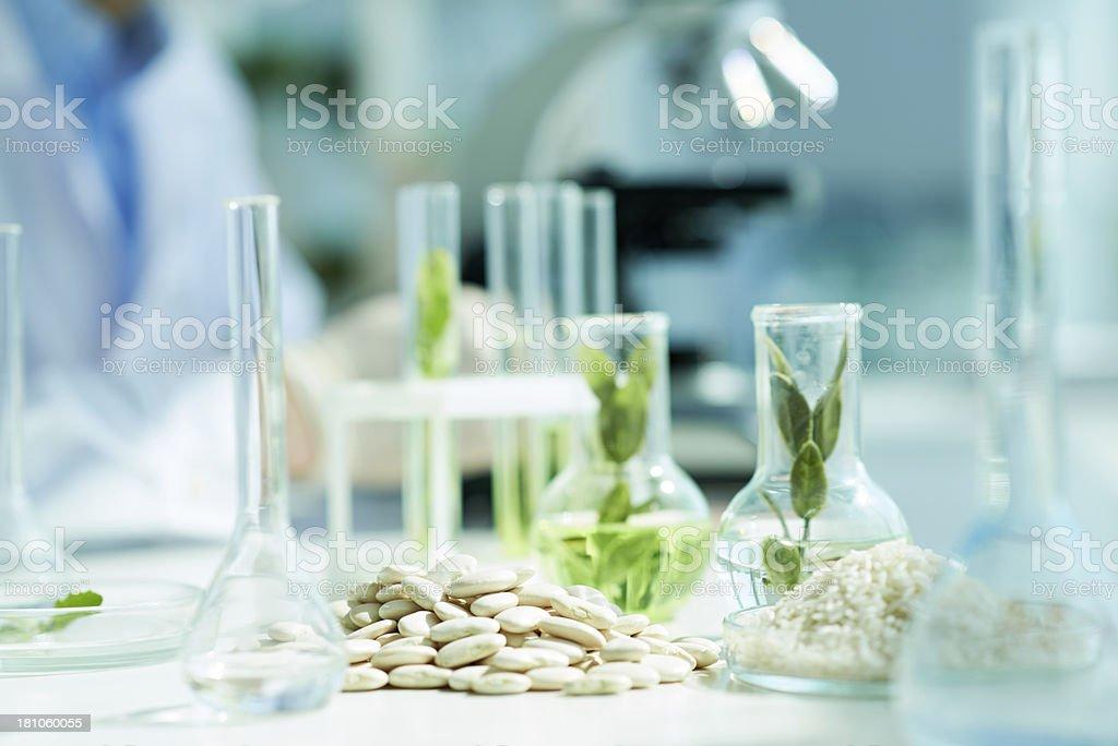 Biology stock photo