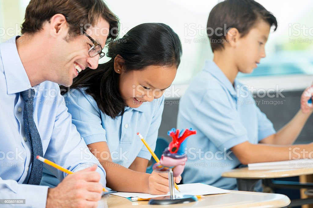 Biology teacher helping student with assignment during class stock photo
