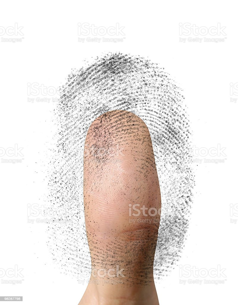 Biometric Identification royalty-free stock photo