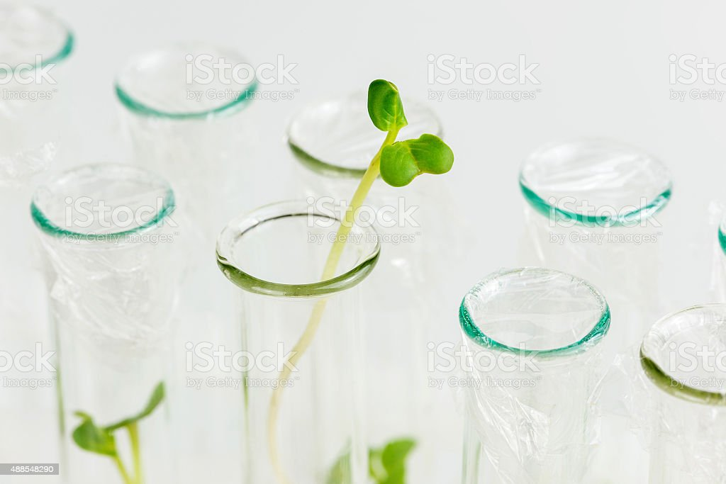 Biosciences stock photo