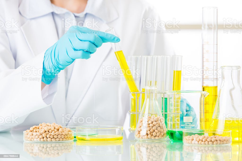 Biotechnology lab to develop genetic modification food stock photo