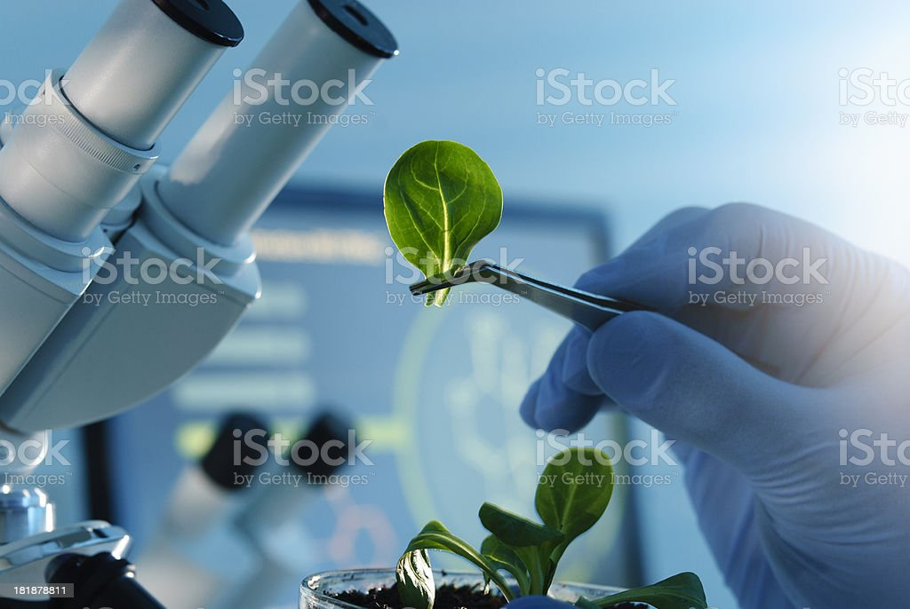 Biotechnology stock photo
