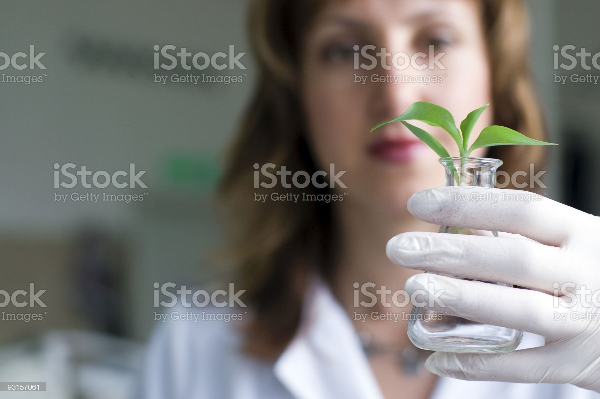 Biotechnology scientist holding an erlenmeyer with a plant royalty-free stock photo