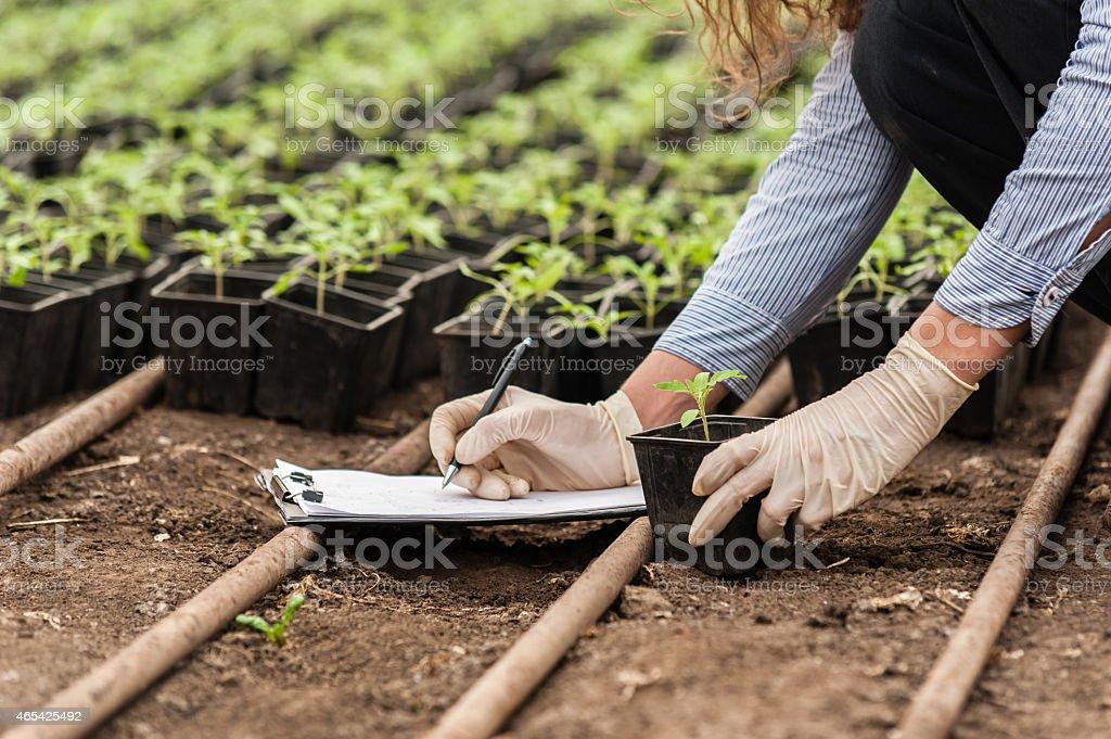 Biotechnology woman engineer stock photo