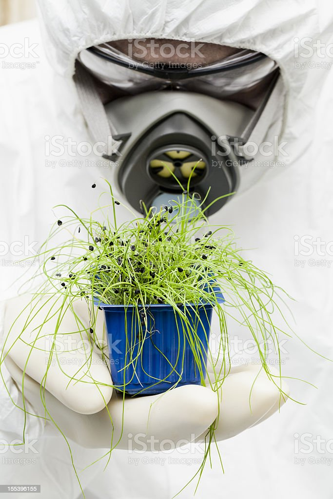 Biotecnology royalty-free stock photo