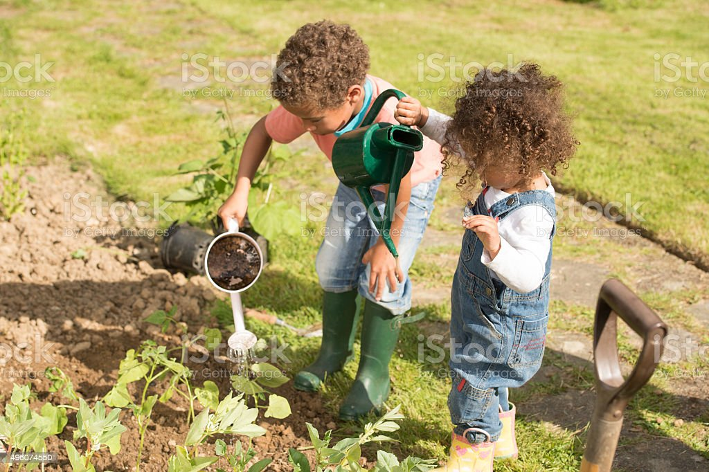 Biracial Little Boy And Toddler Watering Vegetables stock photo