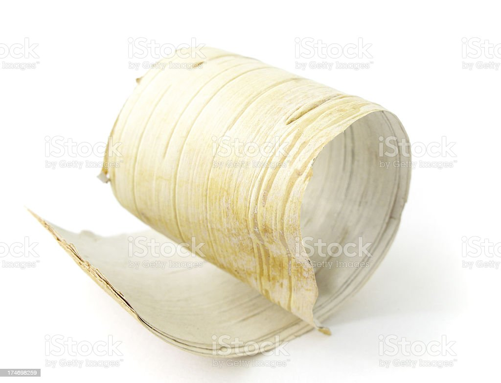 Birch bark curl. royalty-free stock photo