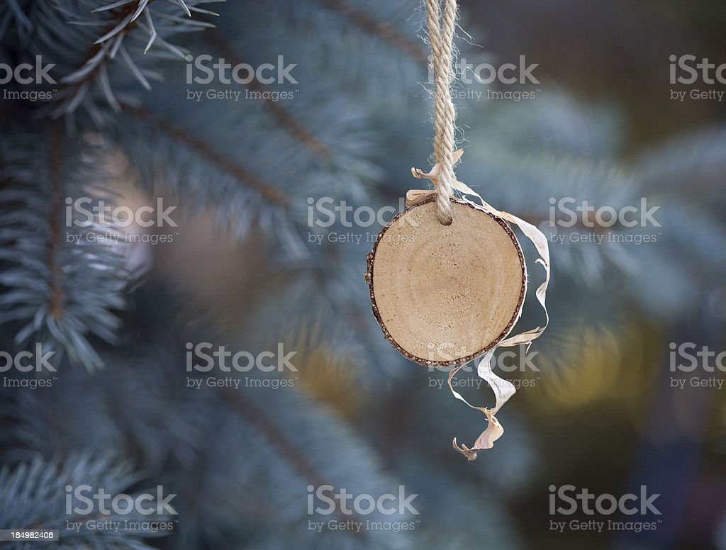 birch disc royalty-free stock photo