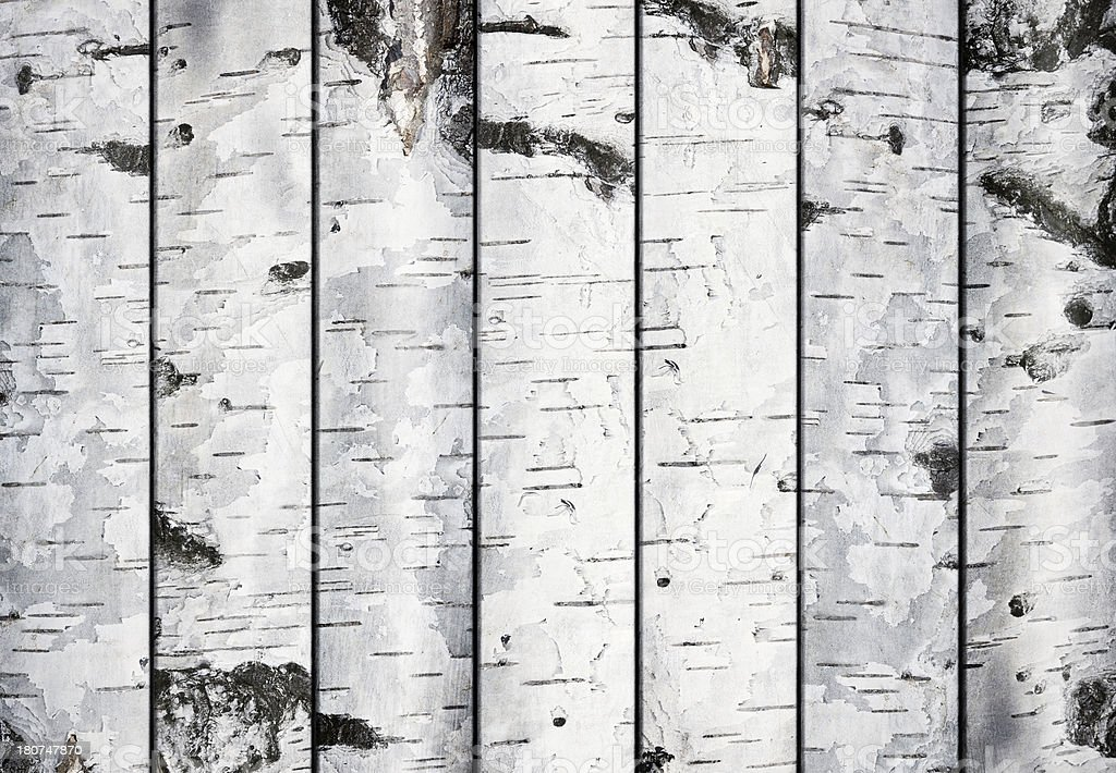 Birch Planks stock photo