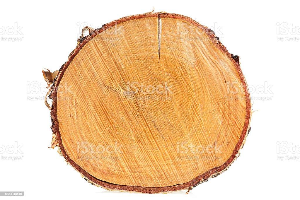 birch stump royalty-free stock photo