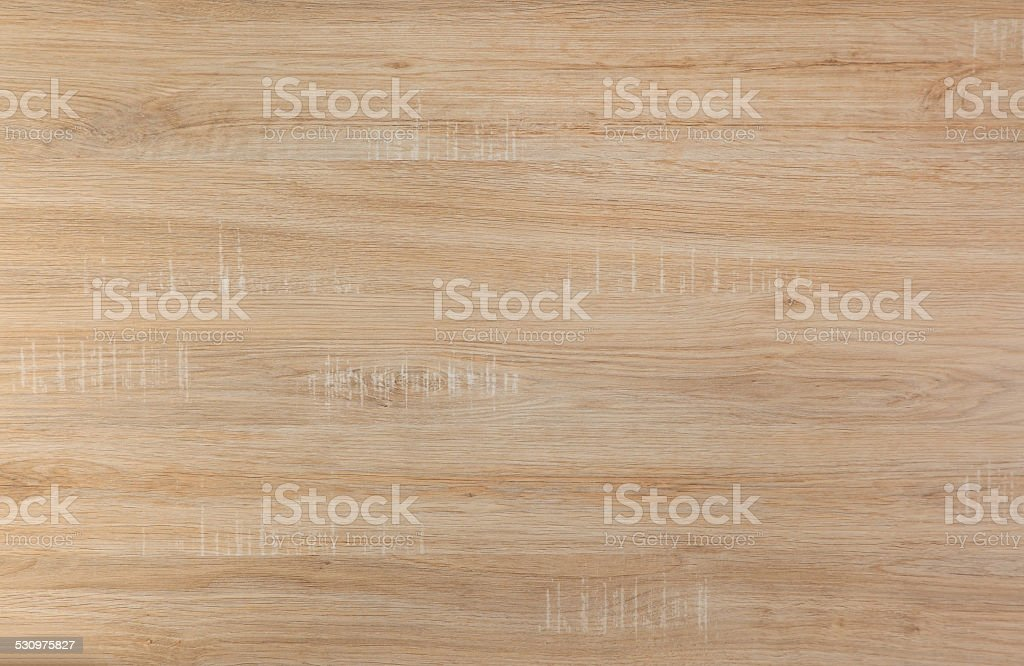 birch wood stock photo