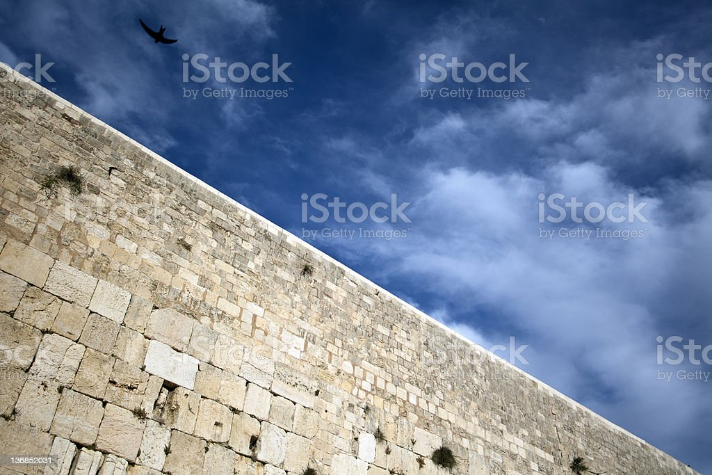 Bird above the Wailing Wall royalty-free stock photo
