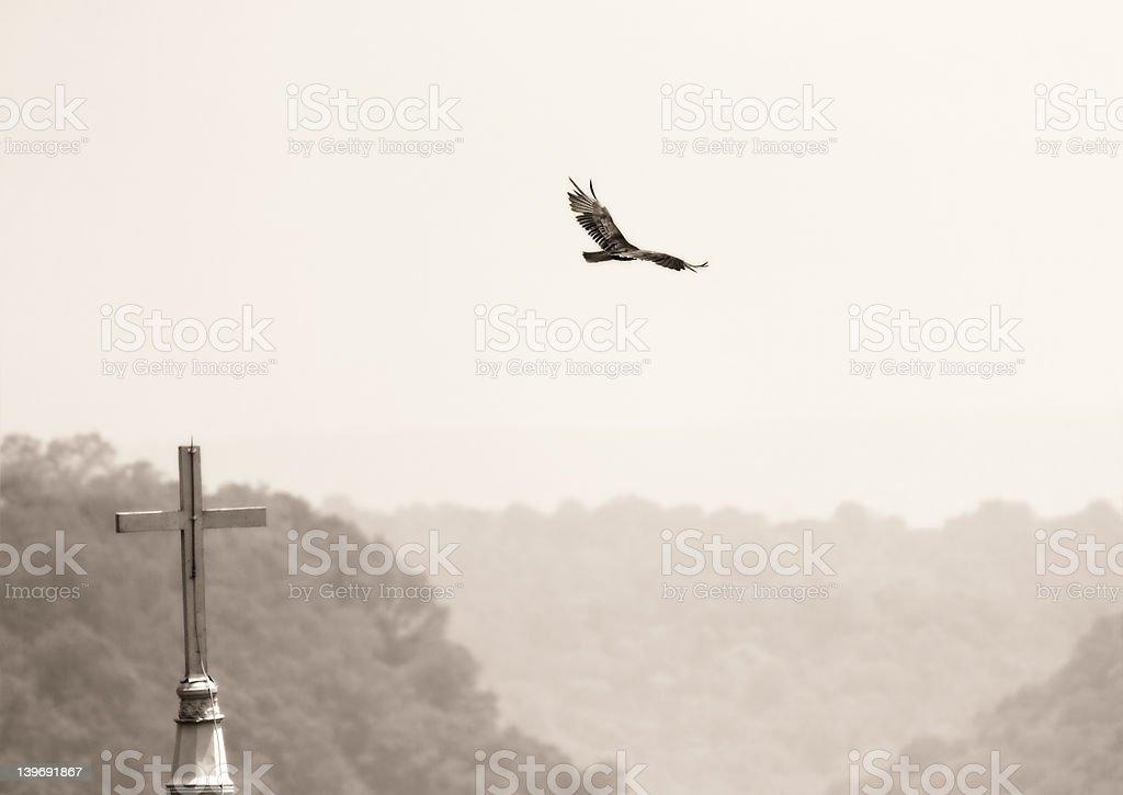 Bird and church royalty-free stock photo