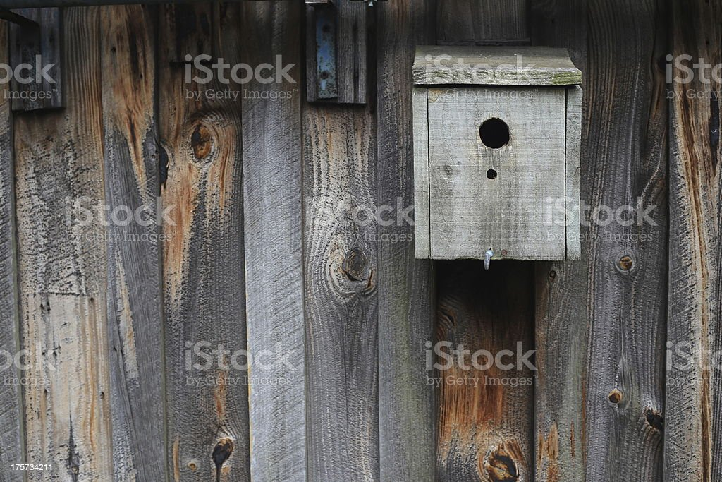 Caja de pájaro foto de stock libre de derechos