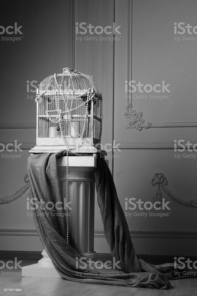 Bird cage stands on Ionic column stock photo