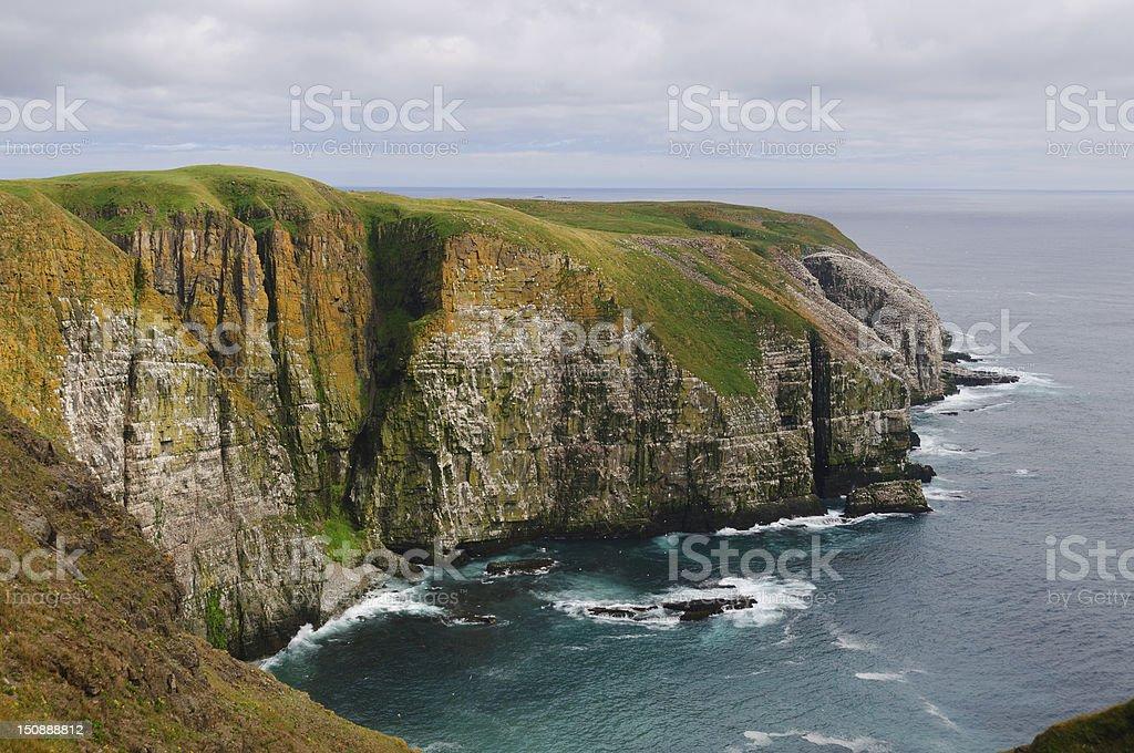 Bird Cliffs in Newfoundland stock photo