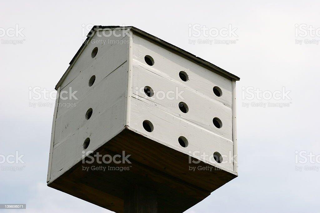 Pájaro condominio en Sky. foto de stock libre de derechos