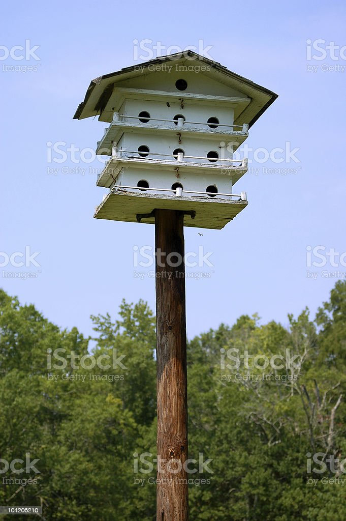 Bird Condo royalty-free stock photo