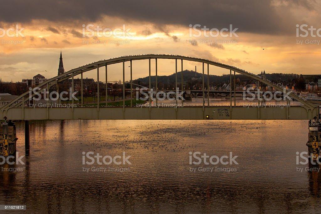 bird covered graffiti railway bridge over big river at dusk stock photo