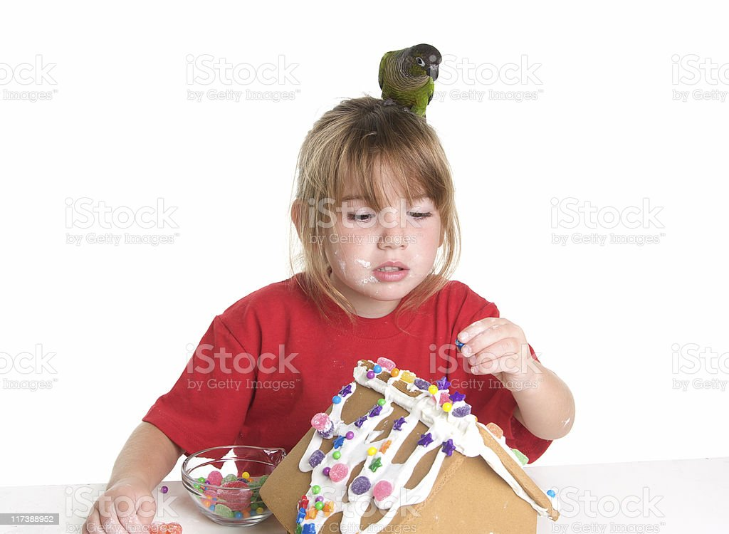 Bird Directing Candy Placement on Gingerbread House stock photo