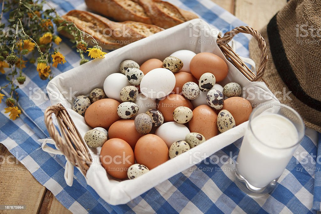 Bird eggs stock photo