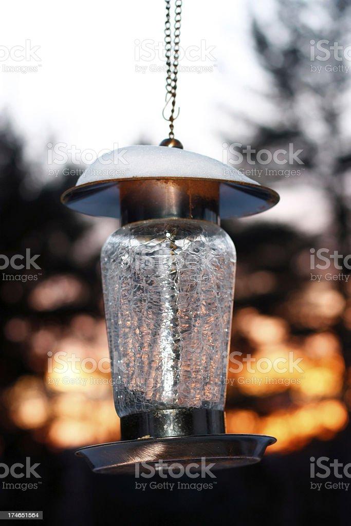 Bird feeder at sunset stock photo