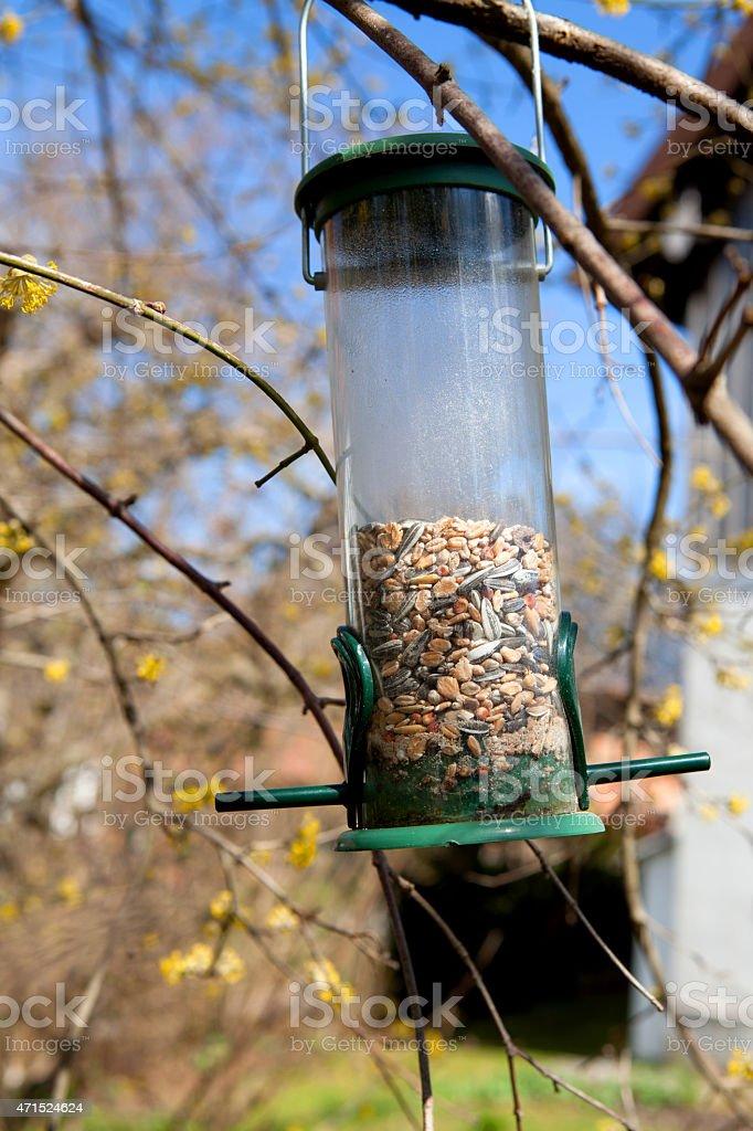 Bird feeder on a tree stock photo