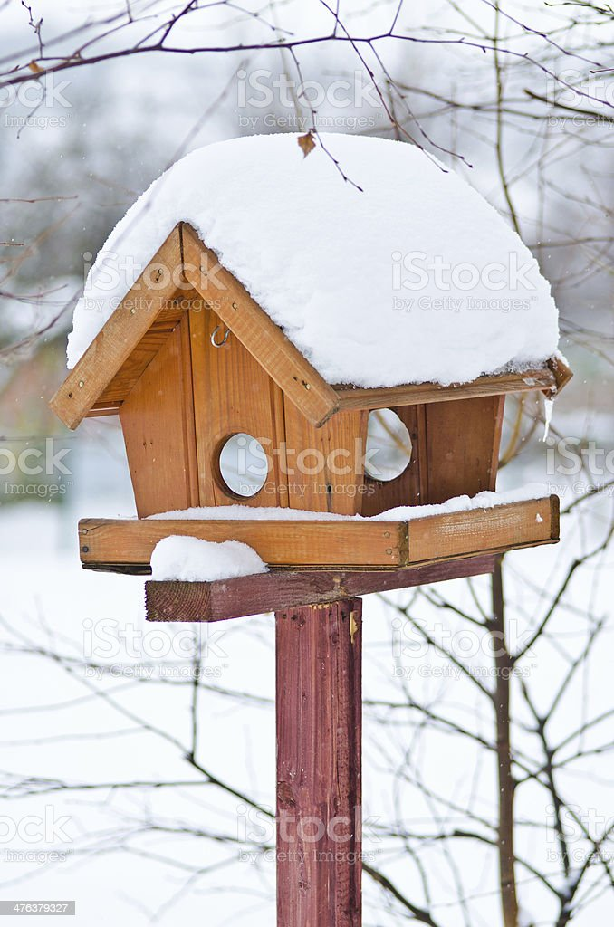 Bird feeder royalty-free stock photo