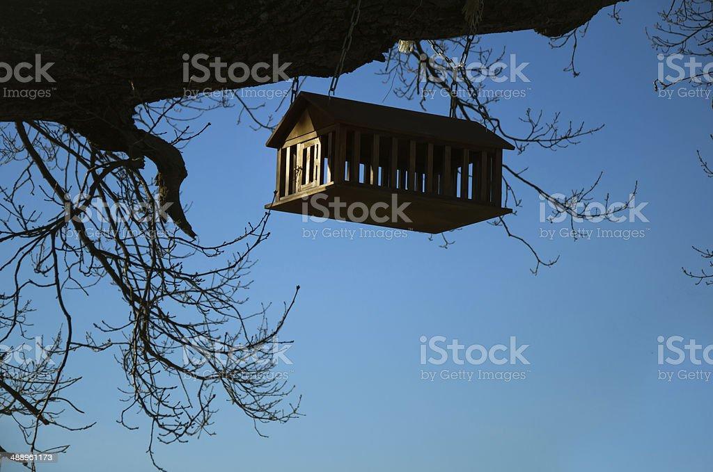 Comedouro de pássaro foto de stock royalty-free