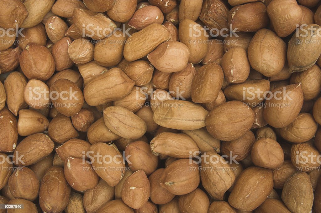 Bird food - peanuts royalty-free stock photo