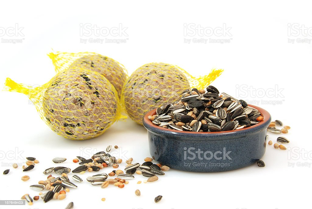 Bird food royalty-free stock photo