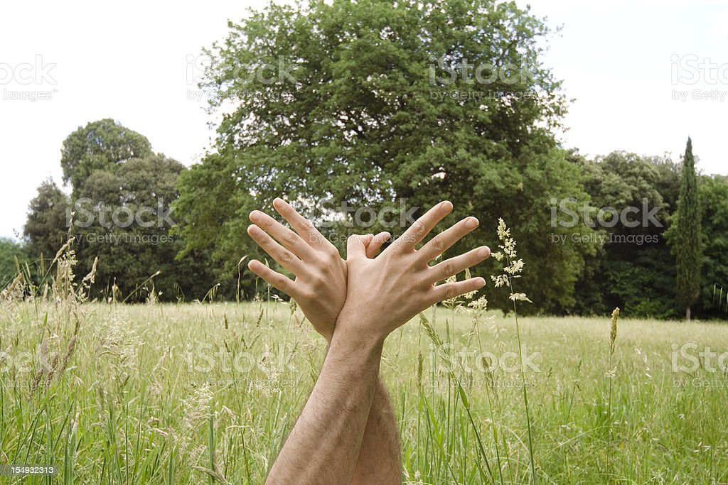 Bird Hand Sign against Grass and Tree stock photo