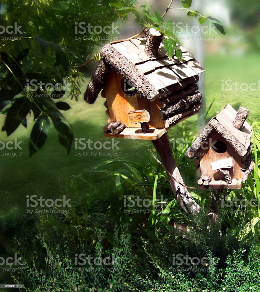 Bird Homes royalty-free stock photo