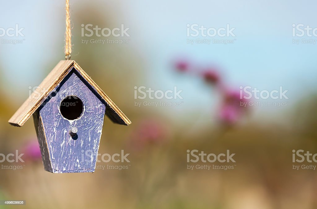 Bird House in Sunshine with Country Flowers stock photo