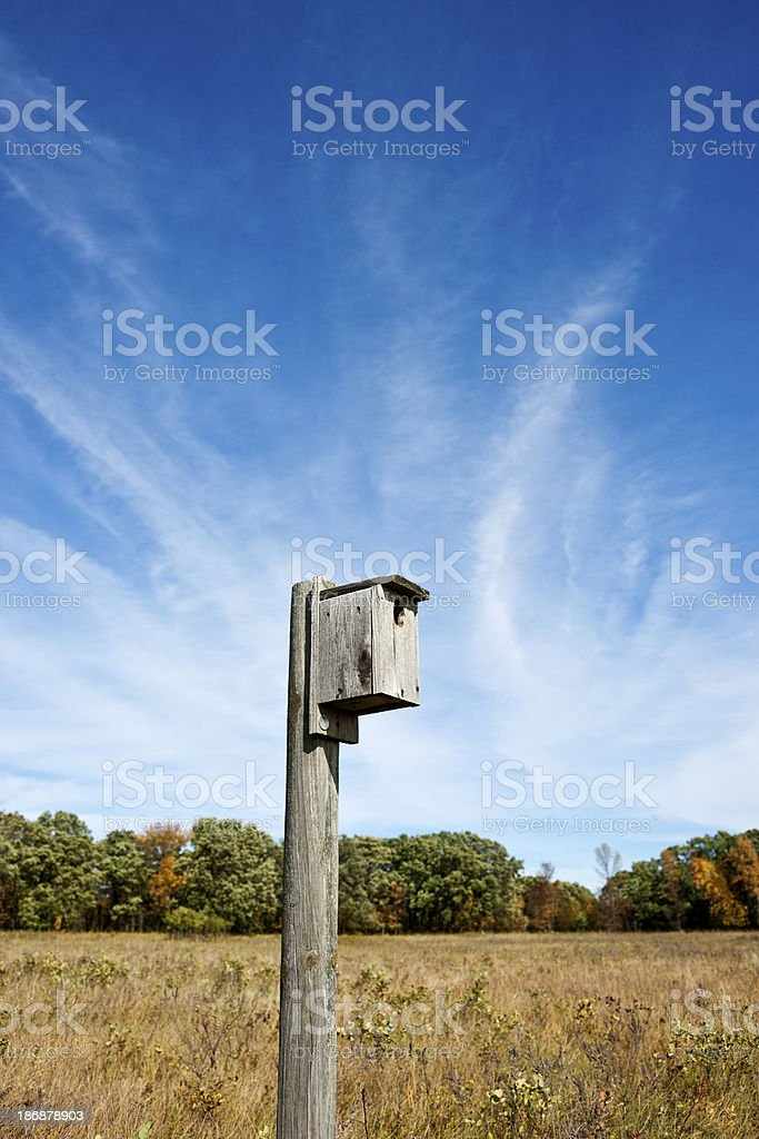 Bird House on Post royalty-free stock photo