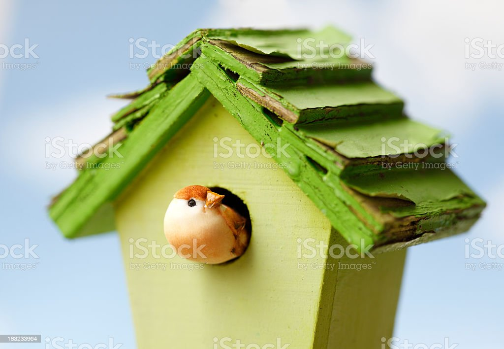 A bird house with a small bird stock photo