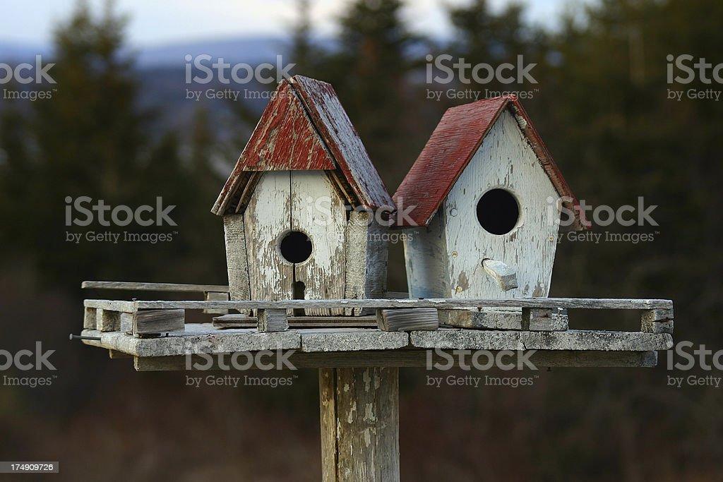 Bird Houses royalty-free stock photo