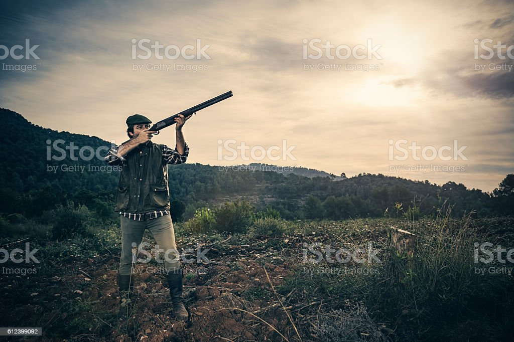 Bird hunter stock photo