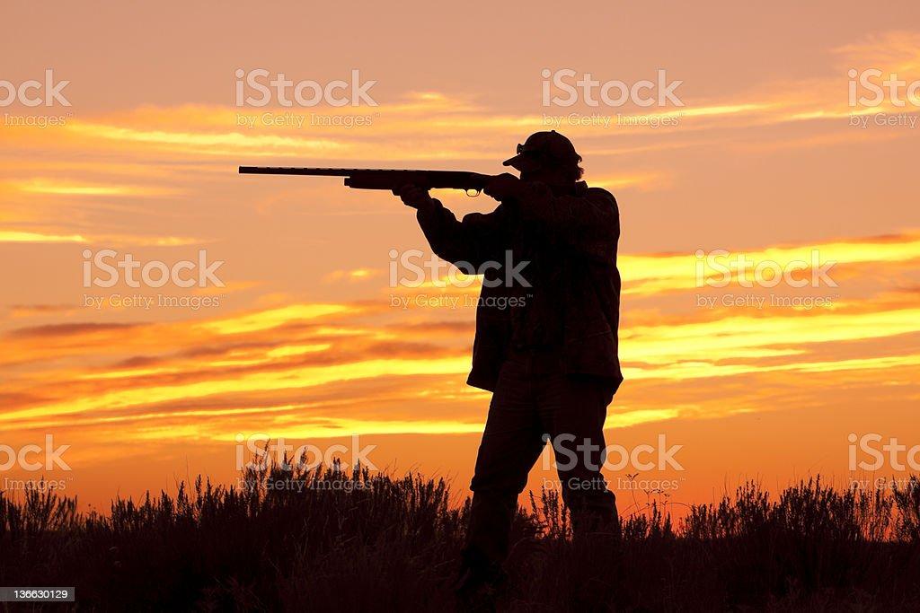 Bird hunter Silhouette stock photo