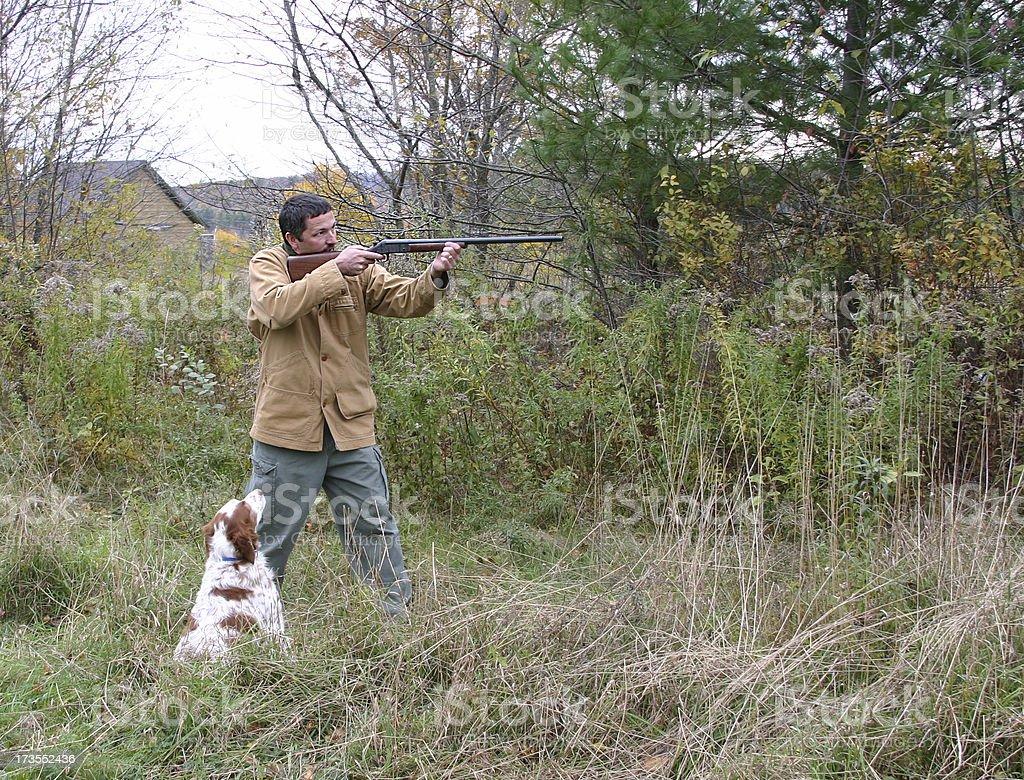 bird hunting royalty-free stock photo